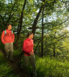 Geführte Wanderungen & Exkursionen